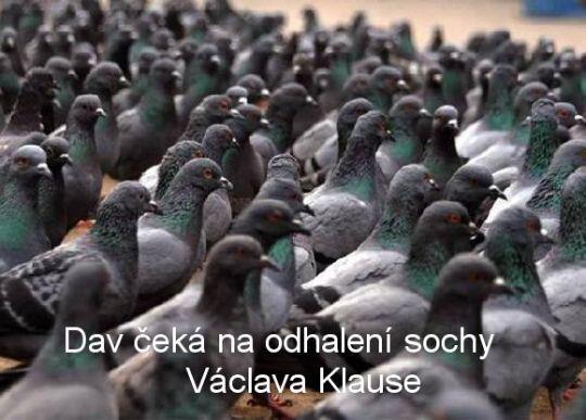 Dav čeká na odhalení sochy Václava Klause