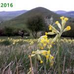 2016-pf-13vrch-stredh